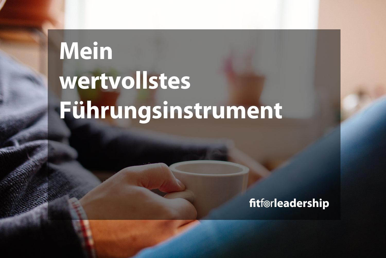 mein-wertvollstes-fuehrungsinstrument