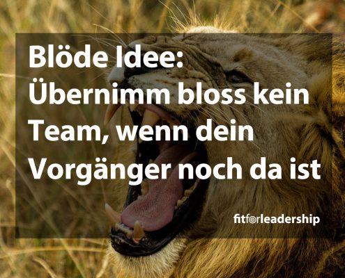 team-uebernehmen
