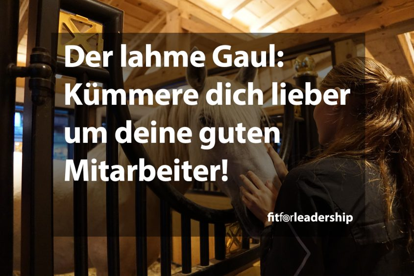021-der-lahme-gaul